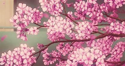 Cherry Blossom Background Heart