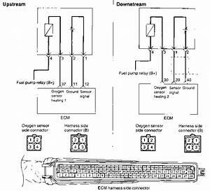 Heated Oxygen Sensor  Ho2s