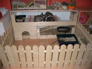 Kaninchenkäfig Für 2 Kaninchen : meerschweinchen kaninchenk fig und zubeh r ~ Frokenaadalensverden.com Haus und Dekorationen