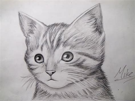 cute kitty drawing  mcorderroure  deviantart
