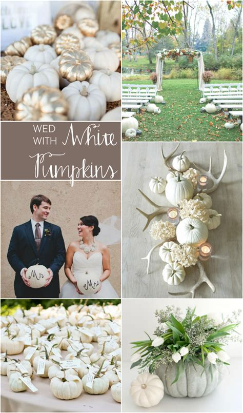 We Love White Pumpkins At Weddings  Bespoke Decor. Wedding Photography And Videography Near Me. Wedding Ceremony Music Performers. Beach Wedding Dresses Mother Of The Bride. Wedding Ceremony York. Small Wedding Venues In San Antonio. Wedding Reception Locations Trinidad. Wedding Reception Locations Calgary. Creative Wedding Photography Yorkshire
