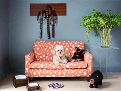 dog friendly sofa fabric 10 quick tips for conquering pet odors hgtv 39 s decorating