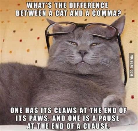 Funny Grammar Memes - 25 best ideas about grammar memes on pinterest haha meme biggest word in english and grumpy meme