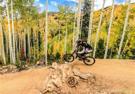 Mountain Bike Park