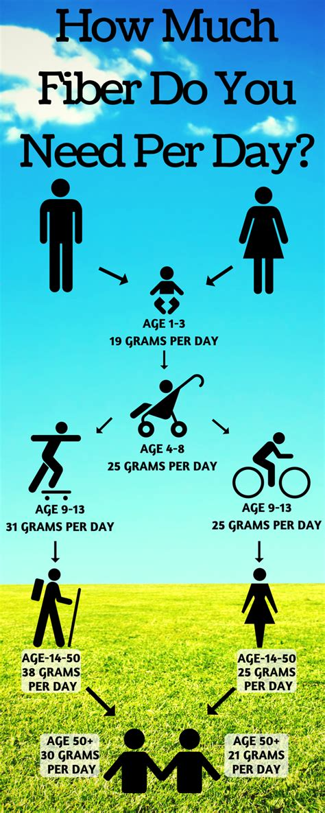 Per Day by How Much Fiber Per Day For Children Adults And Beyond