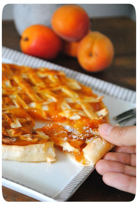 tarte aux abricots sans pate tarte grillag 233 e aux abricots p 226 te 224 tarte sans gluten et sans lactose herta creme de sucre