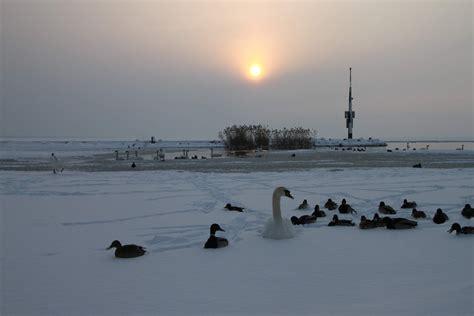 Winter photos 2010 - Hungary