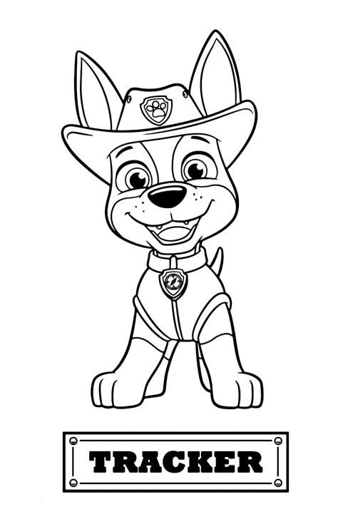 paw patrol tracker il cucciolo  jack russel arrivato