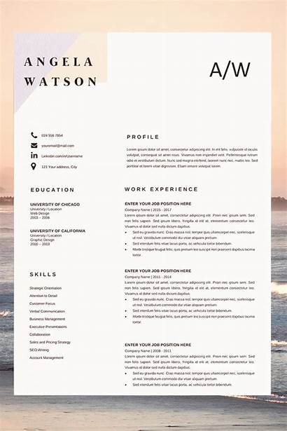 Resume Template Word Outline Examples Builder Cv