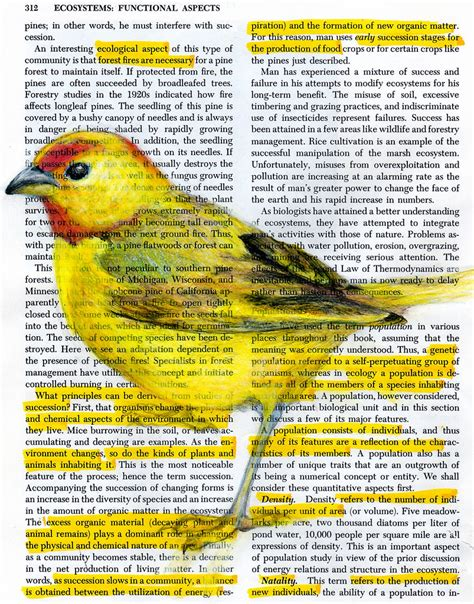 birds in books colossal