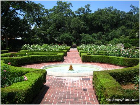 new gardens visiting new orleans botanical garden miss smarty plants