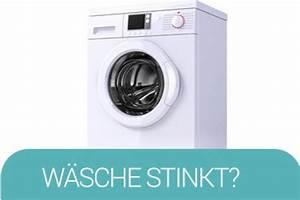 Abfluss Stinkt Natron Essig : sofa reinigen ~ Bigdaddyawards.com Haus und Dekorationen