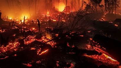 Fire Indonesia Fires Burning Forest Wildfires Rainforest