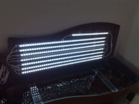 neon led aquarium s 233 clairer efficacement avec les led et un design efficace