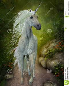 Beautiful Unicorn Black and White