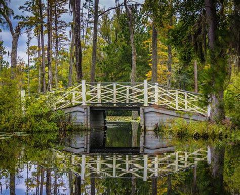 cypress gardens sc cypress gardens moncks corner south carolina sc