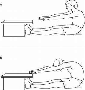 Effect of massage of the hamstring muscle group on ...