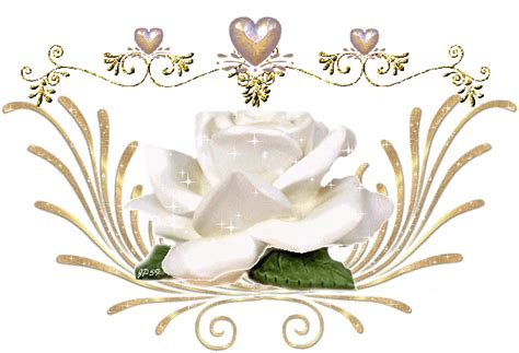 la cuisine des anges une couronne de roses blanches ladyfée ses secrets