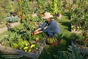 Carre De Jardin Potager : le potager en carr s avec la m thode fran aise ~ Premium-room.com Idées de Décoration