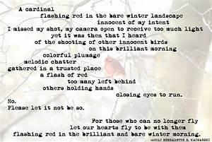 creative writing descriptions of love write my essay nursing ma creative writing oxford