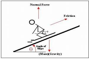 5 Best Images Of Net Force Diagram Worksheet