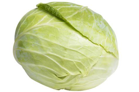 cuisiner un choux vert cabbage the louis bonduelle foundation