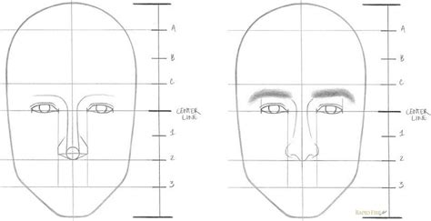 Learn How To Draw A Face In 8 Easy Steps