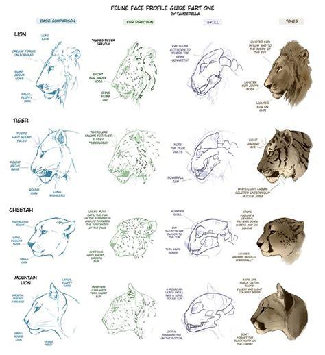 ideas  draw animals  pinterest tutorial