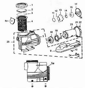 Intex Pool Pump Parts Diagram