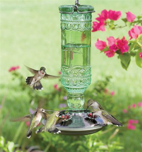 Pictures Of Bird Feeders Different Types