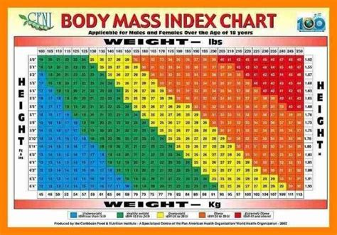 Bmi Table For Male And Female