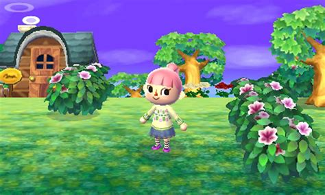 Animal Crossing Releasing For Ds In
