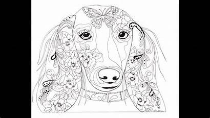 Mindfulness Coloring Adults Dogs