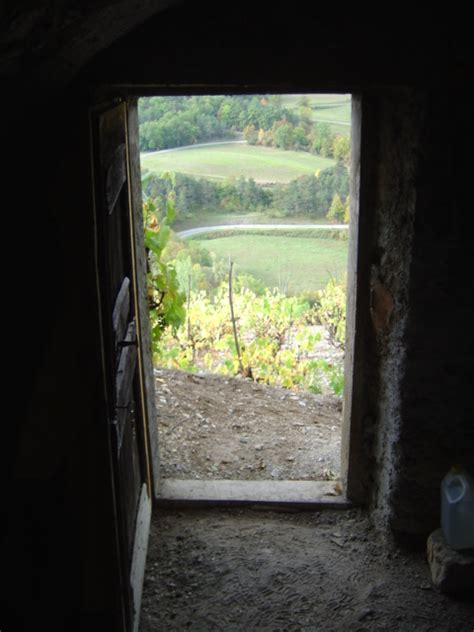les vignes vignes et vignerons du tri 232 ves