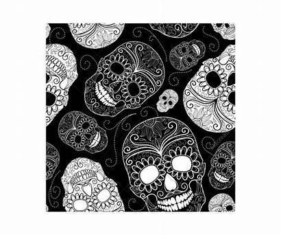 Skull Sugar Vector Patterns Vectors Skulls Pattern