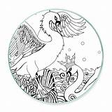 Swan Coloring Swans Shelley sketch template