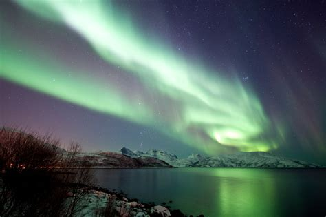 trips to see the northern lights northern lights tours and cruises in norway