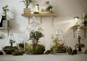 Terrarium Plante Deco : diy notre mode d emploi du terrarium elle d coration ~ Dode.kayakingforconservation.com Idées de Décoration