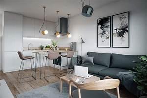 Aménagement Petit Appartement : am nager petit appartement ~ Nature-et-papiers.com Idées de Décoration