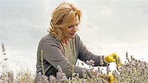 Verholzten Lavendel Schneiden : lavendel schneiden und trocknen so wird 39 s gemacht ~ Lizthompson.info Haus und Dekorationen
