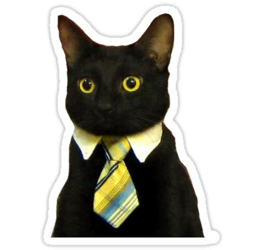 quot business cat quot stickers by adamrwhite redbubble