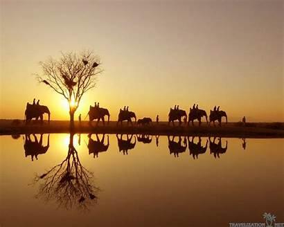 Safari African Wallpapers Wallpapersafari Travelization Joy Desktop