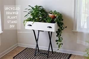 Jardiniere Interieur : jardini re d 39 int rieur tutoriel gratuit diy tutolibre ~ Melissatoandfro.com Idées de Décoration