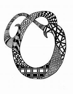 Letter o monogram in black and white drawing by nan wright for Letter o monogram