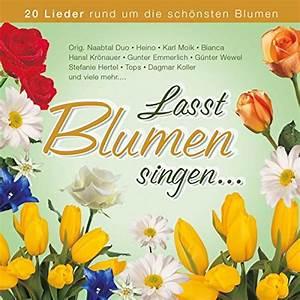 Blumen Der Liebe : fiori d 39 amore blumen der liebe by bianca on amazon music ~ Orissabook.com Haus und Dekorationen