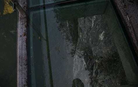 glass walkway  chinese mountainside strange beaver