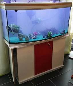 Komplett Aquarium Kaufen : aquarium 240l komplett mit unterschrank eheim filteranlage usw in rheinzabern fische ~ Eleganceandgraceweddings.com Haus und Dekorationen