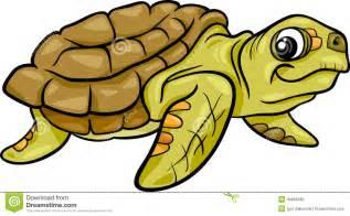 Cartoon Sea Turtle Illustrations