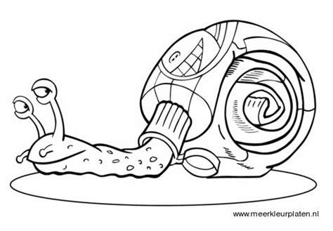 Kleurplaat Turbo Slak by 23 Best Herfst Slakken Kleurplaten Images On