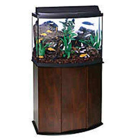 Lava L Fish Tank Petsmart by Aqueon 174 36 Gallon Bow Front Aquarium Ensemble Fish